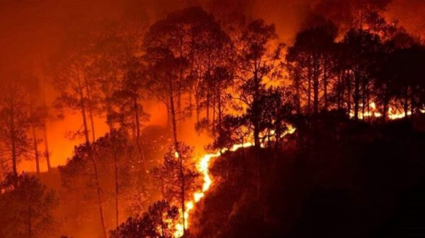 California wildfires burn 3.75 million acres with 26 fatalities