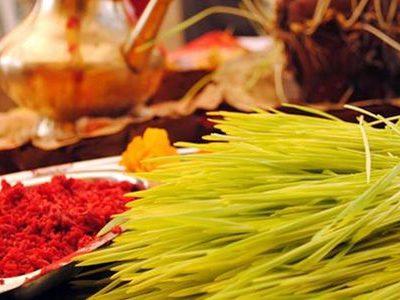 "Hindus celebrate ""Vijaya Dashami"" with Tika and Barley grass"