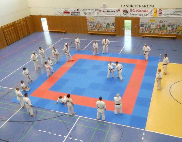 Nepali Karate team wins four gold medals in Chemnitz Championship